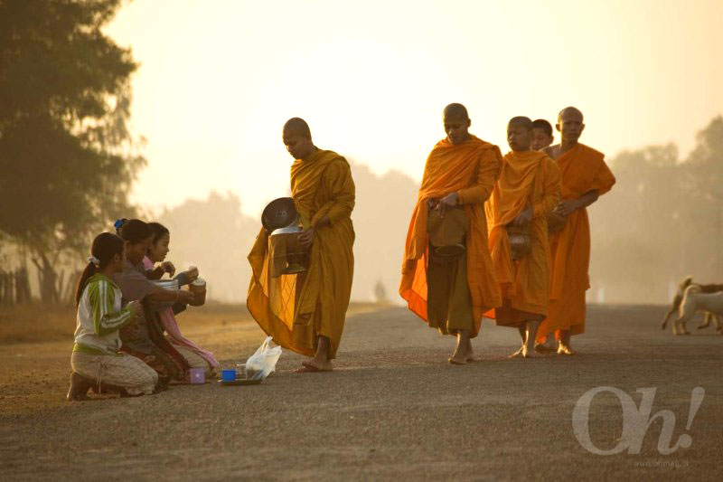 Monks lining-up for morning alms-giving in Laos.